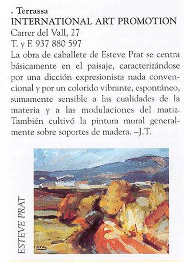 esteve-prat-paz-dibuixant-carbonet-pintor-oli-acrilic-bibliogradia-exposicions-critica-2002-revistart